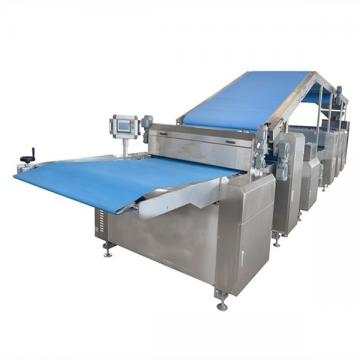 Automatic Particle Bottling Production Line for Biscuit